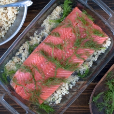 atlantic-salmon-dilled-gravlax-process-1708-2