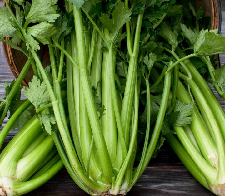 worden-farm-csa-crops-3919-2
