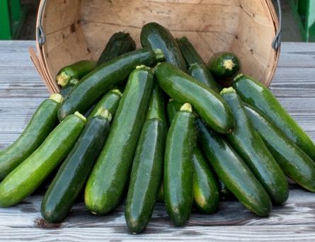 worden-farm-csa-crops-4223