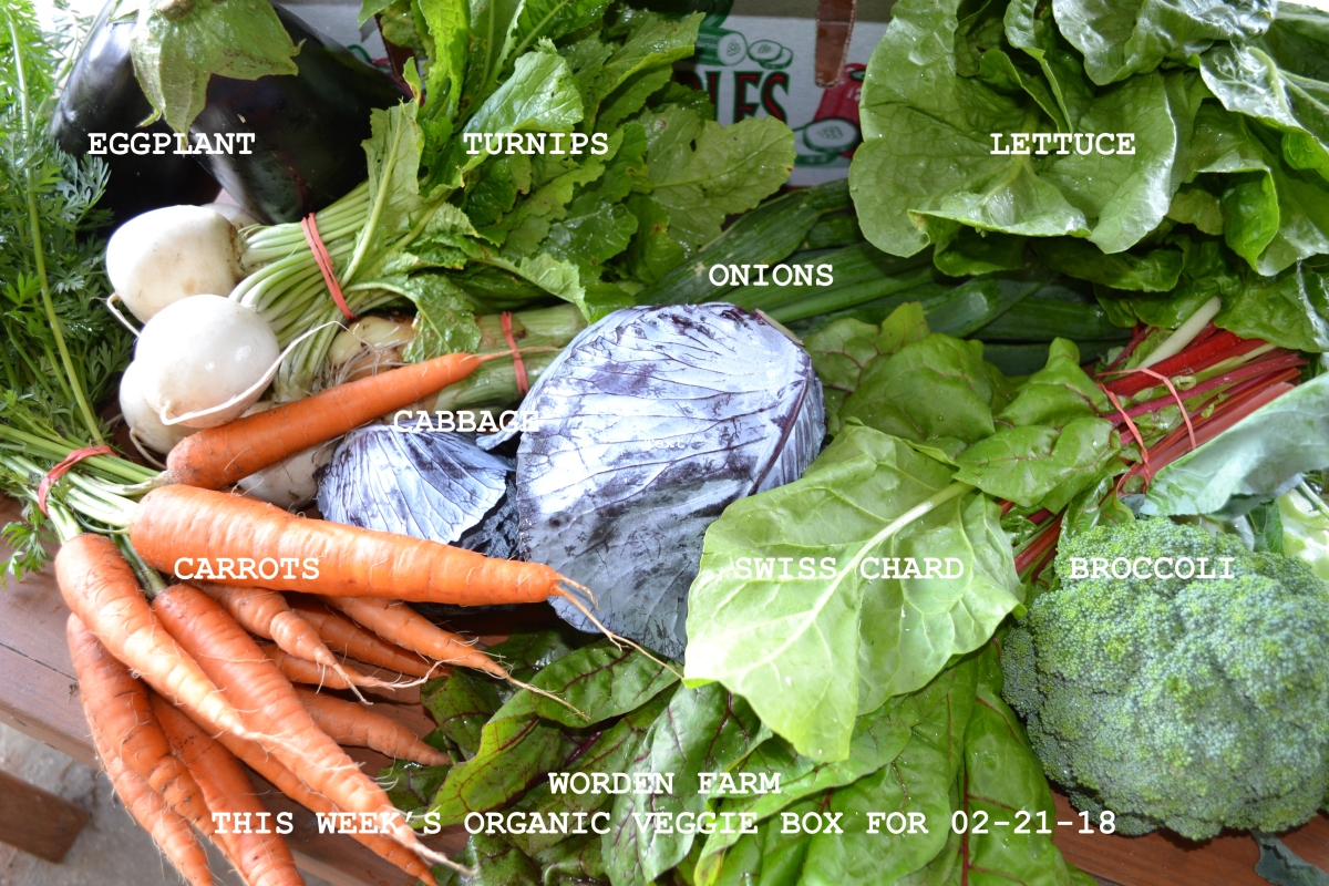 This Week's Organic Veggie Box for 02-21-18