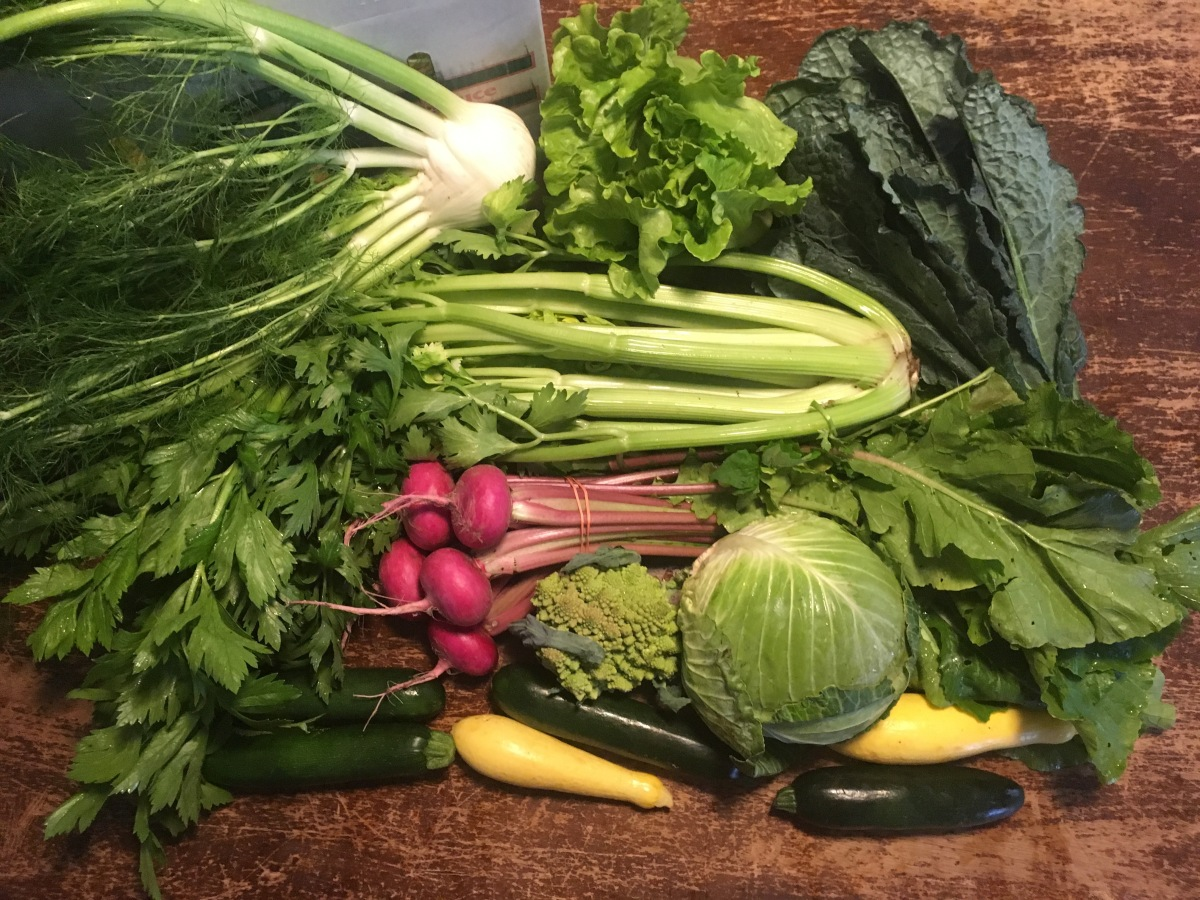 This Week's Organic Veggie Box for 03-14-18