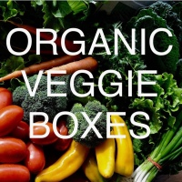 Sign up now for Organic Veggie Boxes